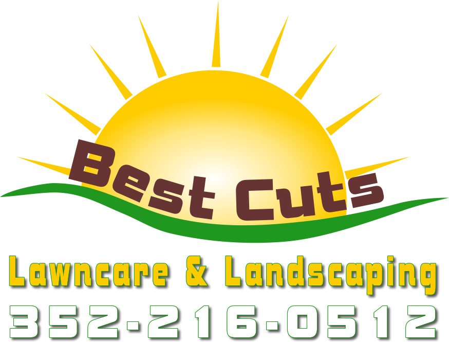 Best Cuts Coupons & Promo Codes