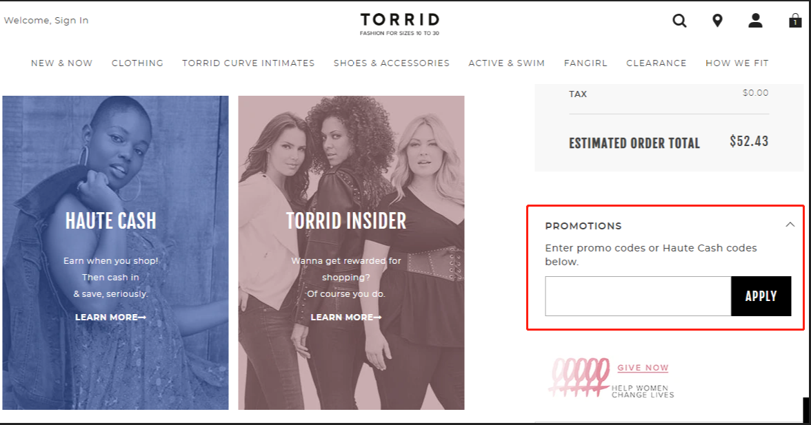 Torrid Coupons 01